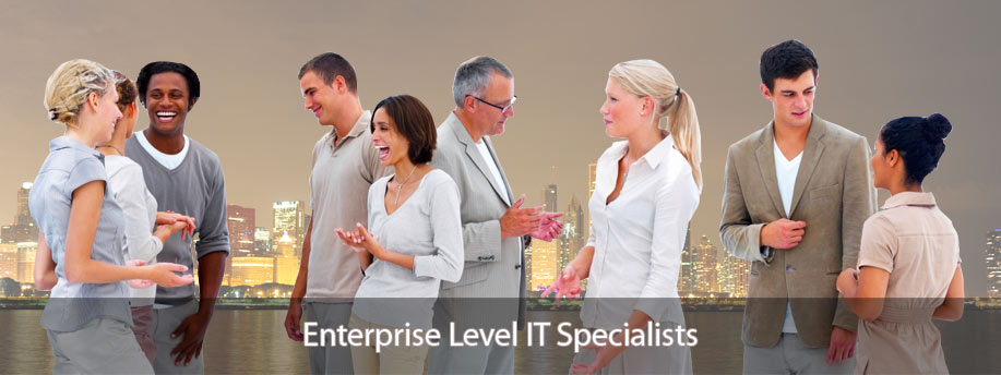 Enterprise level IT Specialists